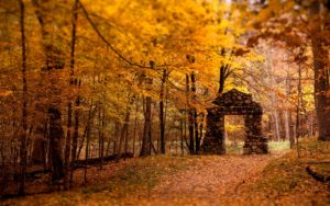Autumn Talks Series 2019 @ St Francis Xavier's Church