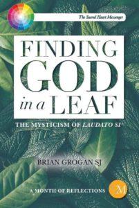 Finding-God-in-a-Leaf by Brian Grogan